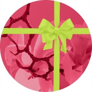 Bons cadeaux - Massage bien être et réflexologie plantaire à Lyon - Florence Savonnet